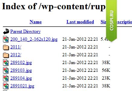 Закройте все папки сайта от просмотра в браузере